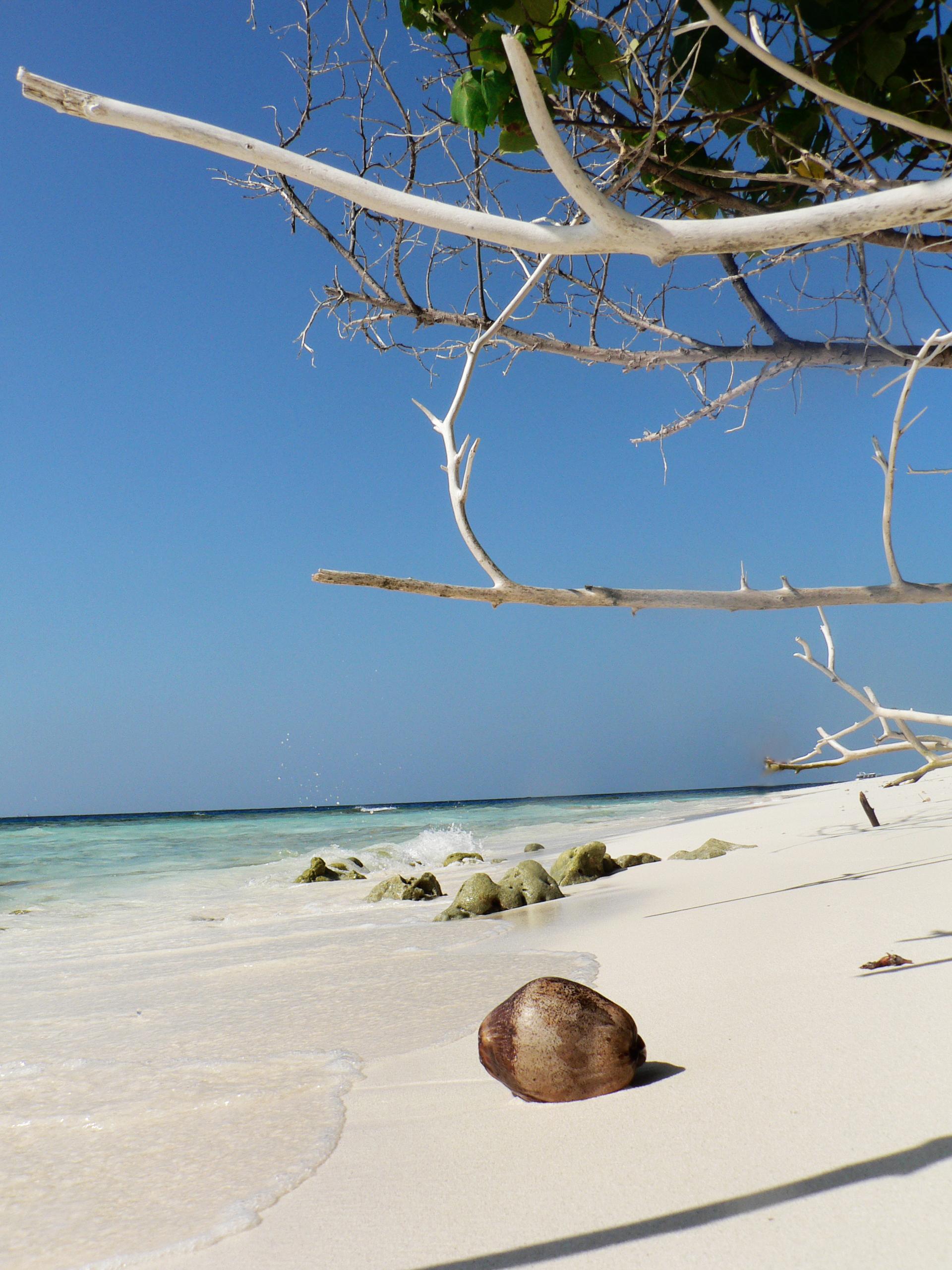 Strand der ABC Inseln Aruba Bonaire und Curacao